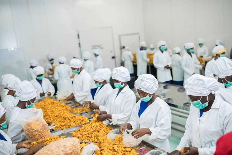 48202080318-0f72yl3xxs-processing-of-dry-mangoes-in-ghana-for-export photo-unido