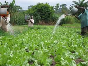 Smallholder Agriculture Mechanization Project Launched In Wa