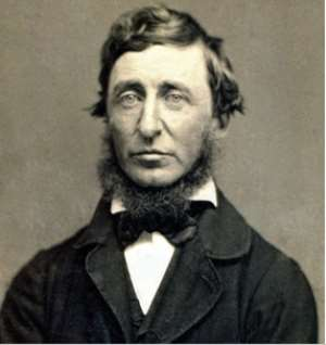 Henry David Thoreau And The Lazy Nurse