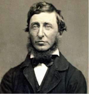 Henry David Thoreau And The Lazy Nurse