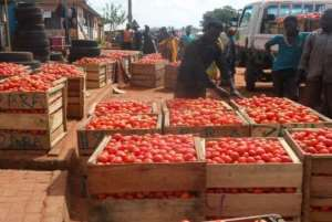 56 Billion CFA Lost Every Year Due To Tomato Importation