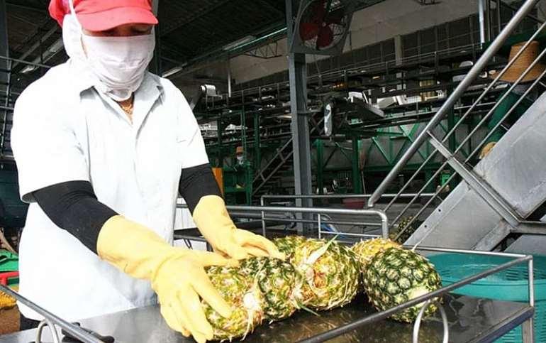 Ekumfi Fruits and Juices Co, Ghana seeking an investor to recycle ...