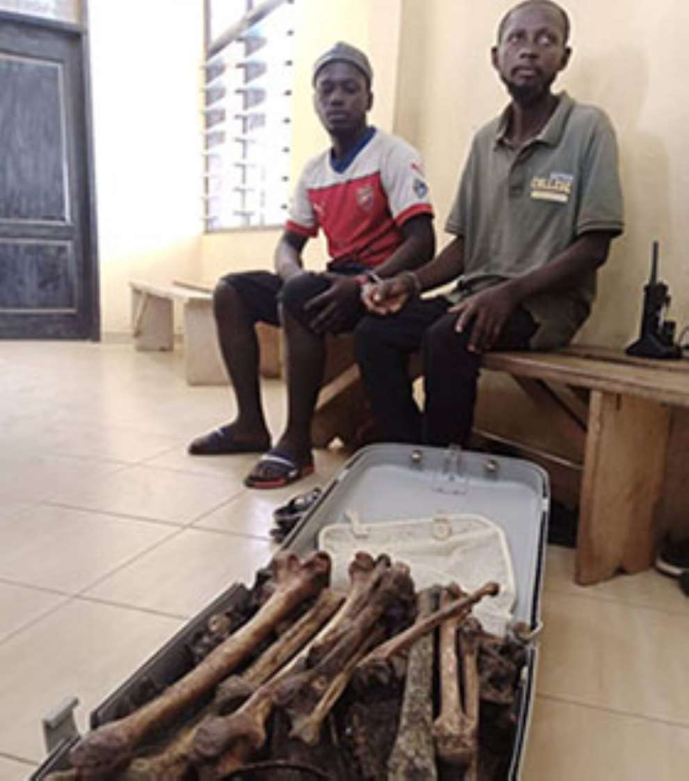 A/R: Human parts dealers arrested at Abuakwa