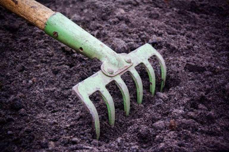 78201962621 1i841p5cbv soil2bbed