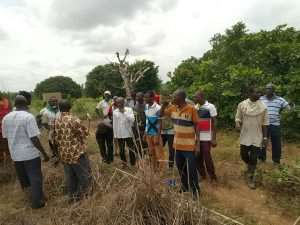 Planting For Food And Jobs Benefit 200 Farmers In Northern Region
