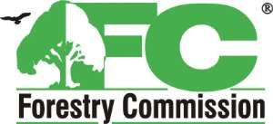 Demystify Cultural Beliefs On Trees - Forestry Commission To Media