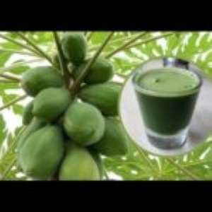 Uses of Papaya Leaf Juice For Glowing Skin And Well-Being