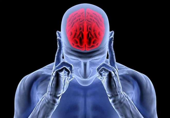 Salt Brain