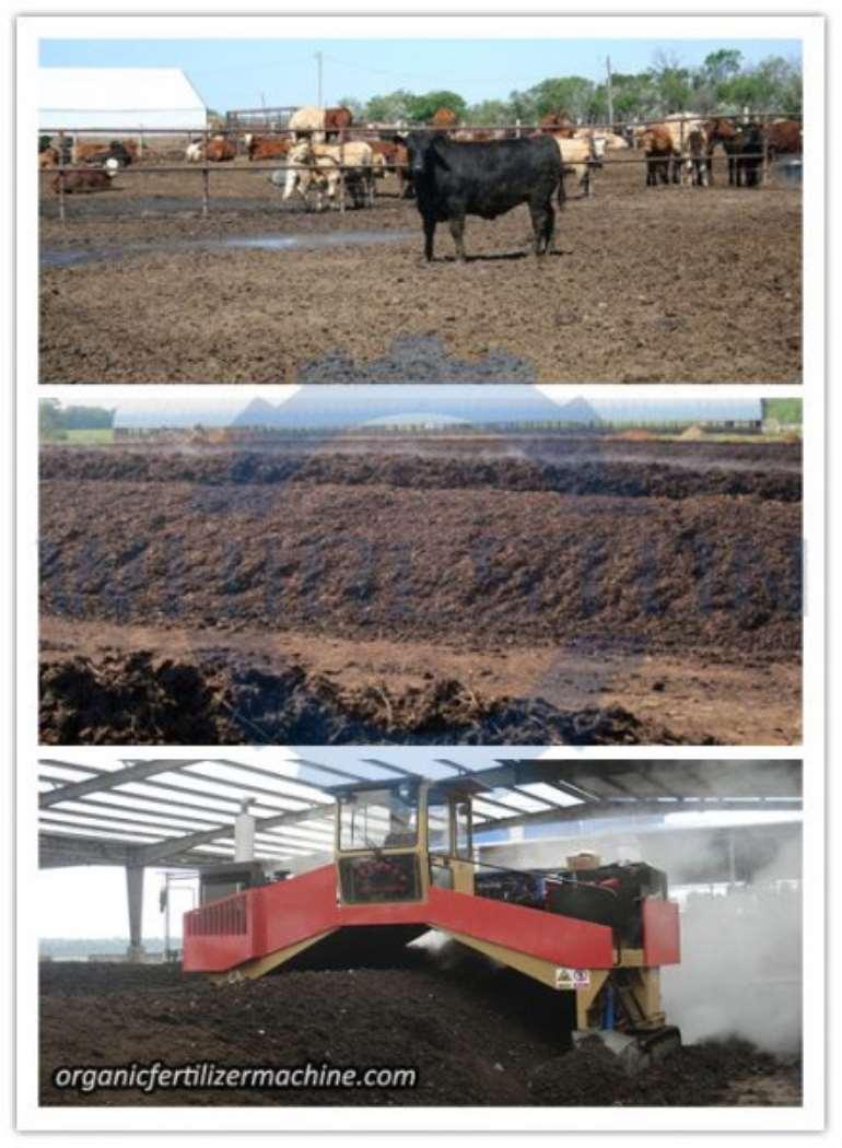 8282017120436 cowdungcomposting440x600