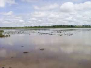 Residents Cry Over Polluted Dam Due To Open Defecation