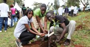 Gov't Slashes Allowance Of Afforestation Staff