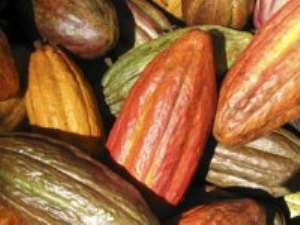 UK company to recycle Cocoa Pods
