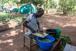 Tanguy Kponton, a training project analyst, prepares soup at the agricultural workshop that teaches young people how to work the land sustainably.  By Yanick Folly (AFP)