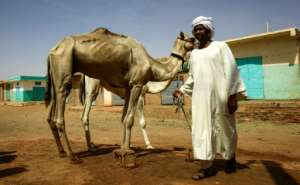 Thousands of Sudanese nomads live in vast desert stretches of North Darfur, North Kordofan and along the border with Chad, Egypt and Libya.  By ASHRAF SHAZLY (AFP)
