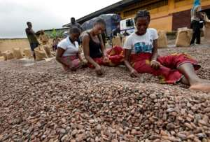 The global chocolate market is estimated at $100 billion, but only six percent of that trickles down to farmers.  By Sia KAMBOU (AFP/File)