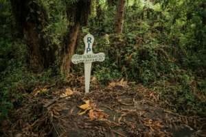 The grave of a ranger killed on duty.  By ALEXIS HUGUET (AFP)