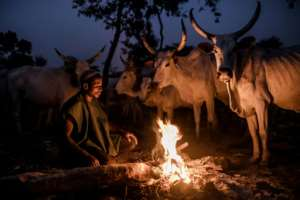 The Fulani have been nomadic herders beyond recorded time.  By Luis TATO (AFP)