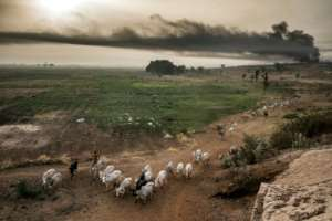 The Fulani's timeless practice of pastoralism finds itself out of kilter with the 21st century.  By Luis TATO (AFP)