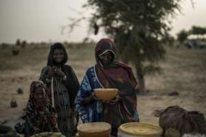 The Fulanis in Niger have seen their herds decimated by droughts and hunger in recent decades -- and this decline is gaining speed.  By Marco LONGARI (AFP)
