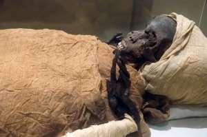 The mummified remains of Pharaoh Seqenenre Taa II,
