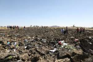 The scene of devastation where the Nairobi-bound Ethiopia Airlines plane came down. By Michael TEWELDE (AFP)