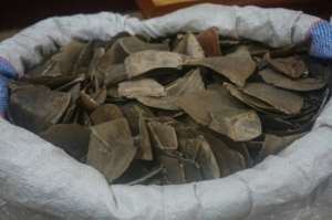 The pangolin scales were said to be destined for Asia.  By Handout (ROYAL MALAYSIAN CUSTOMS/AFP/File)