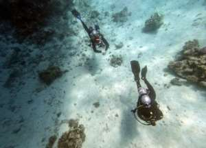 The rebound in tourism could put further pressure on Egypt's corals, according to local experts.  By Mohamed el-Shahed (AFP)