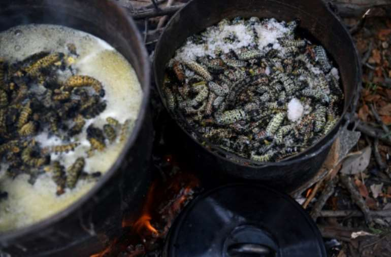 The worms being boiled after harvesting. By Monirul Bhuiyan (AFP)