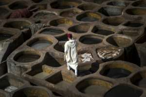 Tourists, their noses covered with mint leaves to ward off the stench, congregate on terraces overlooking the tanneries to snap pictures of the men working below, using the same methods as their ancestors did..  By FADEL SENNA (AFP)