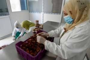 Tunisian women prepare red peppers used to make harissa paste at their cooperative in Menzel Mhiri in central Tunisia