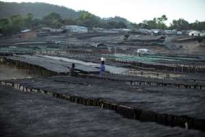 A Malawian fisherman walks through planks and table used to dry fish. Experts say declining fish catches are mainly due to unsustainable fishing practices.  By GIANLUIGI GUERCIA (AFP)
