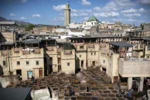 A view of the tannery in the 9th century walled medina in the ancient Moroccan city of Fez.  By FADEL SENNA (AFP)