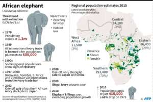 Map of Africa's elephant populations, with chronology of species protection measures, the ivory trade ban and poaching.  By Kun TIAN (AFP)