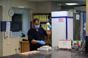 An Egyptian medical staff works on plasma received from a man who recovered from Covid-19 at the National Blood Transfusion centre in Cairo.  By Khaled DESOUKI (AFP/File)