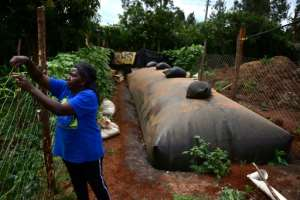 Anne Mburu uses a flexibag to generate biogas. She used to spend around $20 a month in buying firewood - now methane provides her fuel.  By TONY KARUMBA (AFP)