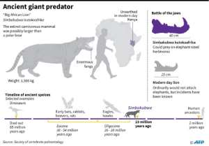 Factfile on an ancient giant predator that lived 23 million years ago in Africa. By Jonathan WALTER (AFP)