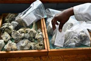 Between 7,000 and 10,000 new fossils arrive at the lab every year, according to paleontologist Job Kibii, of the Nairobi National Museum.  By SIMON MAINA (AFP)
