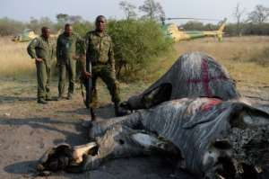 Botswana's military says it is ready to repel armed elephant-poaching gangs.  By MONIRUL BHUIYAN (AFP)