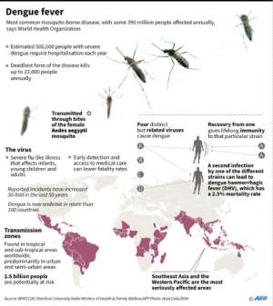 Factfile on dengue fever.  By Gal ROMA (AFP)