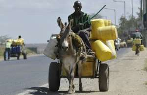 Donkeys are a familiar sight in many parts of Africa -- but Burundi says the animals given to it by France are 'exotic' and must be quarantined.  By SIMON MAINA (AFP)