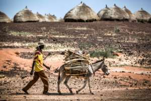 Dry land: Niger is one of the world's most climate-vulnerable countries.  By Luis TATO (FAO/AFP)