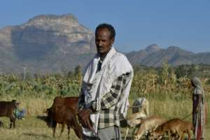 Ethiopian farmer Alema Baraki, 52, on his land in Sebeya village on the frontier with Eritrea. A decades-long dispute over the border remains one of the outstanding problems in ties.  By MICHAEL TEWELDE (AFP)
