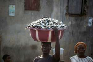 Fish is a major part of the diet for Sierra Leone's 7.5 million people.  By Saidu BAH (AFP)