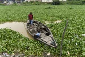 Fishermen say the weed is so thick it creates a dense cover that makes it difficult for fishing boats to navigate.  By PIUS UTOMI EKPEI (AFP)