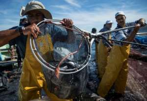 Fishermen say they are paying for the