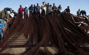 Fishing is a major industry in Moroccan-controlled Western Sahara.  By FADEL SENNA (AFP/File)