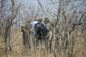 Forensic investigators are seen near the scene where a poached rhino was found in the Kruger National Park on August 21.  By WIKUS DE WET (AFP)