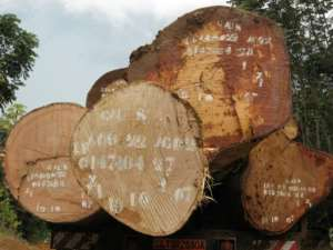 Forestry is one of Gabon's biggest industries but excessive logging and corruption are entrenched, say critics.  By DELPHINE RAMOND (AFP)