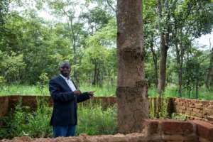 Historian Guillaume Nkongolo at the foot of the tree that his research says is the exact place where Lumumba was killed.  By Samir Tounsi (AFP)