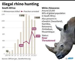 Data on the African white rhinoceros..  By A.Leung, gal/sim (AFP)